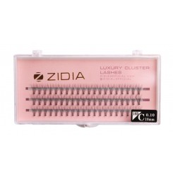 Ресницы-пучки 10D C 0,10, 3 ленты ZIDIA Luxury Cluster Lashes / 10 мм