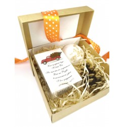 Набор подарочный (Мыло с высказыванием Машина + бомбочка) soap stories BOX #6